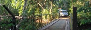 van-road-trip-petite1200x399